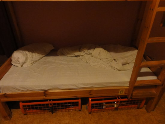 Хостел The Naughty Squirrel Backpackers: Bottom bunk