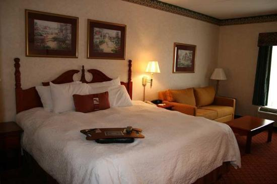Hampton Inn Medina: Guest Room