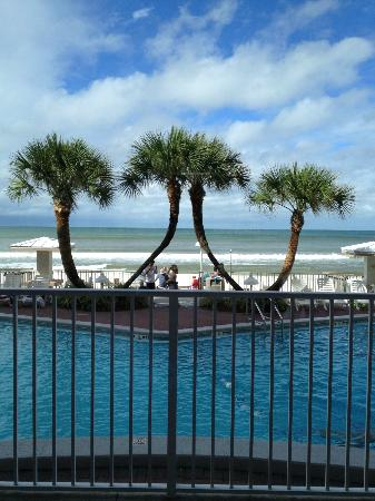 Palmetto Inn & Suites : View from the lobby
