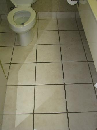Cabot Lodge Tallahassee: Bathroom Tile &amp; Grout - Very Dirty