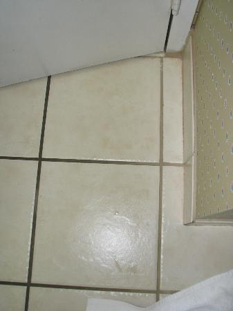 Cabot Lodge Tallahassee: The Grout Color behind the door vs the rest of the grout