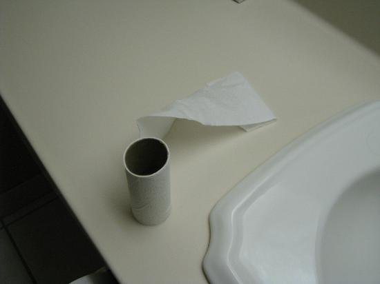 Cabot Lodge Tallahassee: Completly used TP roll left on hanger