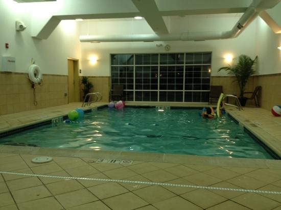 Hampton Inn &amp; Suites Berkshires: Small, but nice, indoor pool.