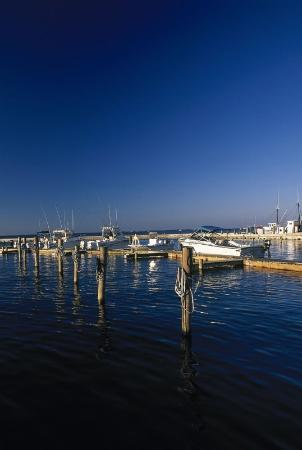 Quality Hotel: Crystal Coast Boats
