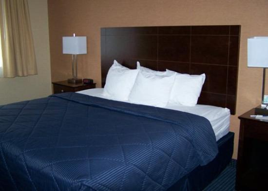 Comfort Inn at Maplewood: King Suite
