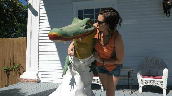 C.A.&#39;s House Bed and Breakfast: Some love to the alligator out the front