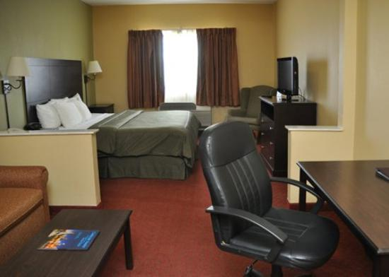 Comfort Suites I-35 North: Other Hotel Services/Amenities