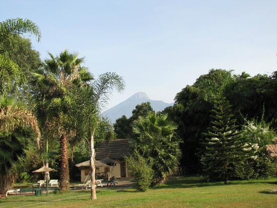 Arumeru River Lodge: Blick Mount Meru