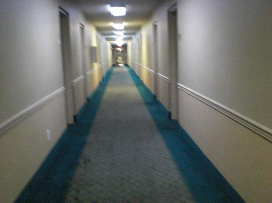 Howard Johnson Express Inn -  Pensacola: stained hallway