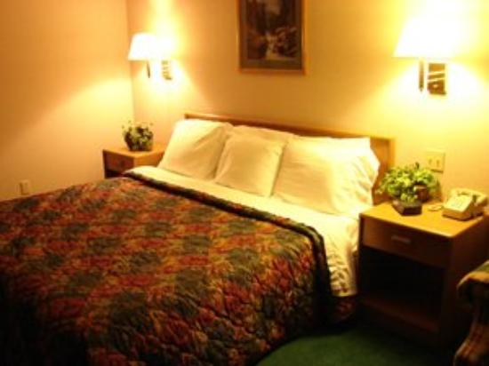 Allington Inn and Suites: Guest room