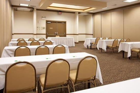 Holiday Inn Mobile West I-10: Conference Room