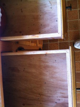 Serenisea Resort Cottages: Rats live in the Hawkins House!