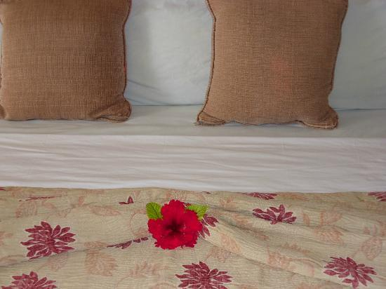 Vista del Mar Boutique Hotel: Housekeepers were great