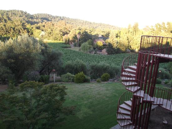 The Wine Country Inn: View from Room 12