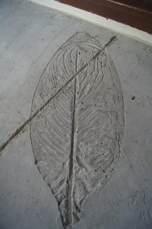 Phi Phi Bayview Resort: leaf prints