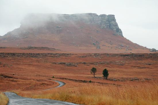 Wild Horses Mountain Guest Lodge: Meandering secret drive into the Berg...