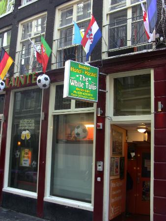 White Tulip Hostel: Approaching from the street