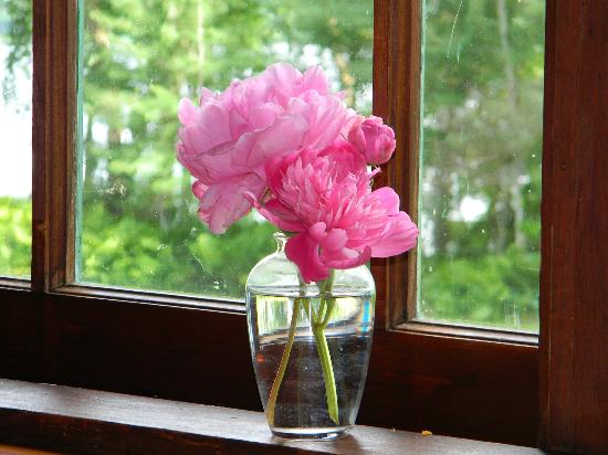 Mikana, WI: Fresh flowers every day in the dining room