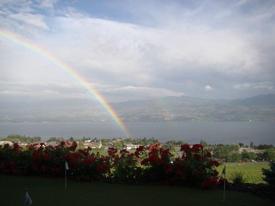 A Vineyard View Bed and Breakfast: Beautiful rainbow in the morning