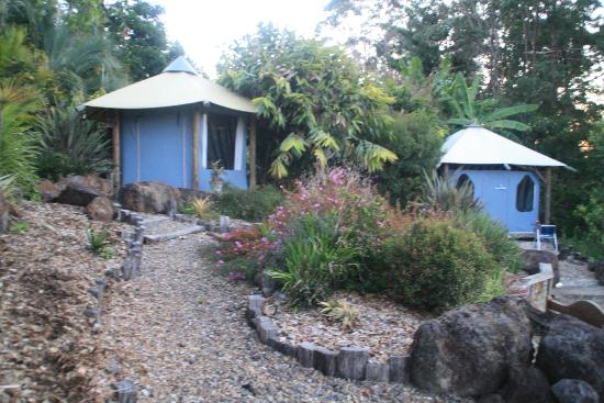 Nimbin Rox Backpackers Resort: Accommodation