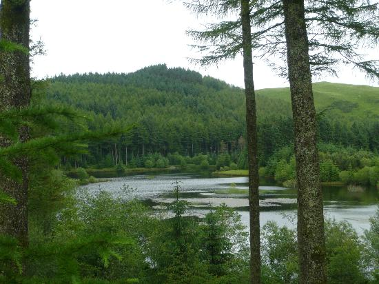 Bwlch Nant yr Arian Forest Visitor Centre: View of the lake