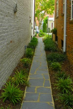 Maury Place at Monument: Felt like we'd entered a secret garden as we made our way down the path to the pool area.