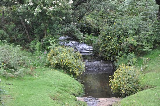 Holiday Home: Stream after heavy rain