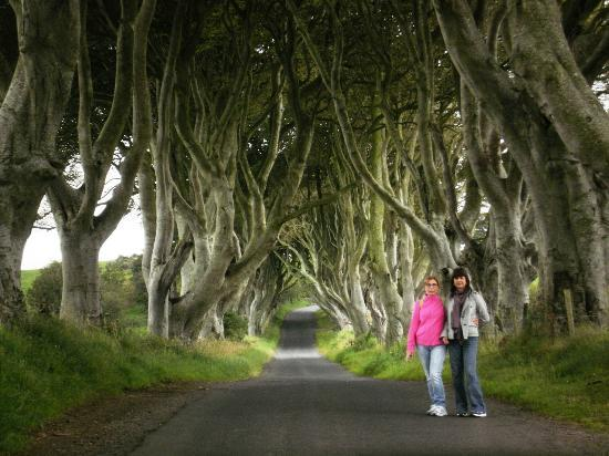 map of the north game thrones with Locationphotodirectlink G186471 D2255519 I43503288 The Dark Hedges County Antrim Northern Ireland on LocationPhotoDirectLink G186471 D2255519 I43503288 The Dark Hedges County Antrim Northern Ireland furthermore Game Of Thrones Location 2 Ballintoy Harbour besides Road Trips In Iceland in addition A Dragon Dawn A  plete Analysis Of The Up ing Battle Of Fire Part 3 The Gates Of Fate besides Slaver 27s Bay.