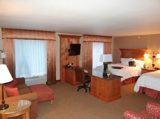 Hampton Inn & Suites Buffalo: Studio 2- Queen room - great for a family