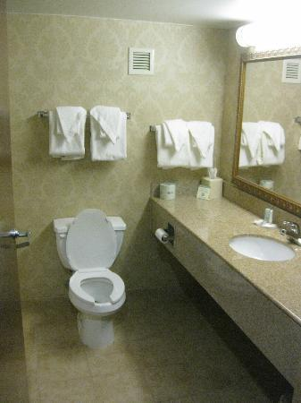 ‪‪Comfort Inn‬: bathroom‬