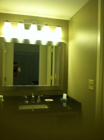 Hyatt Lisle: sink outside the shower/toilet room