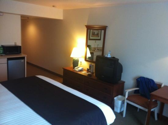 BEST WESTERN Inn At The Meadows: King bedroom-small tv but all you need