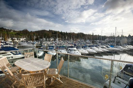 Windermere Marina Village: A beautiful marina view from your apartment terrace