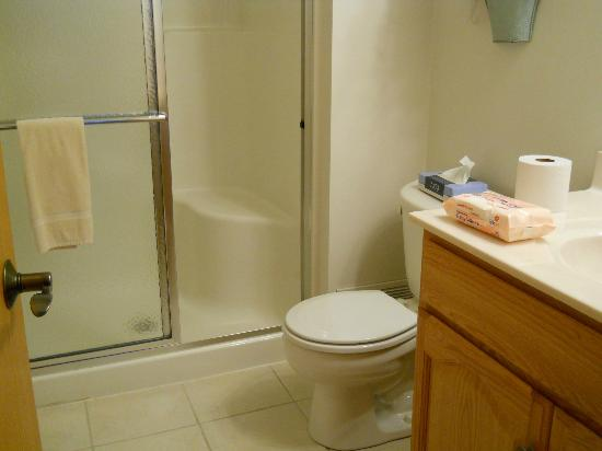 Graystone Cottages: nice little bathroom