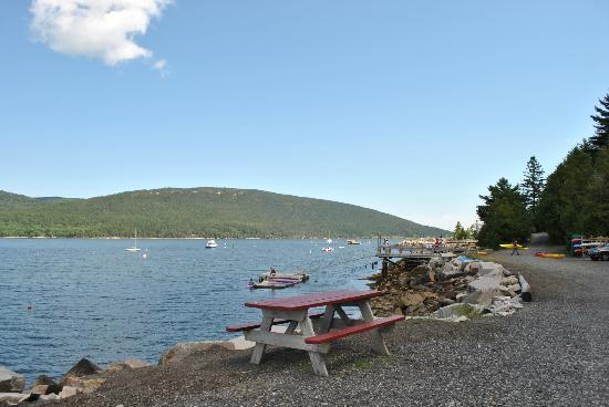 Somes Sound View Campground: Somes Sound from the campground