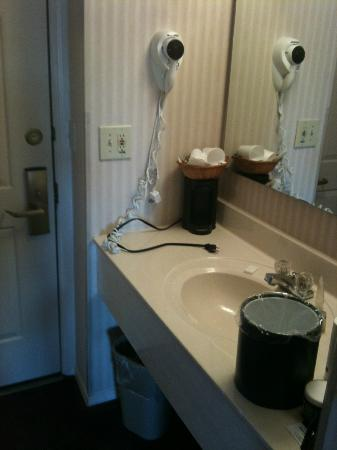 Wintergreen Resort & Conference Center: Sink was out in the room by the door.