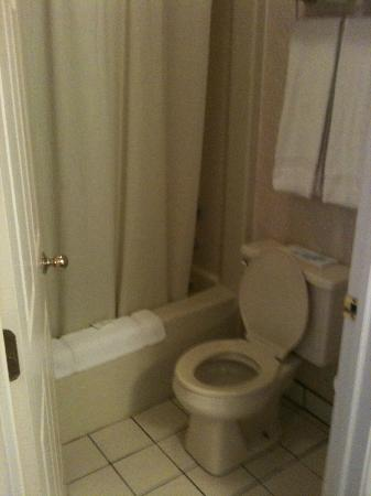 Wintergreen Resort & Conference Center: Possibly the tiniest bathroom I've ever used.