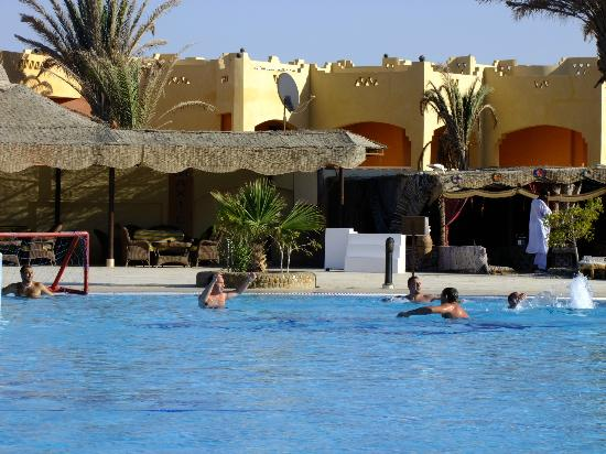 Blue Reef Red Sea Resort: la piscina