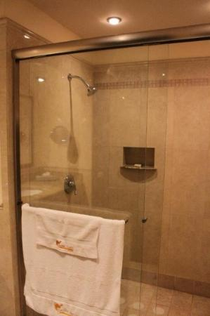 Hotel Ticuan: Expansive shower