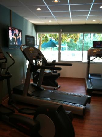 Holiday Inn Charlottesville-Monticello: small but really nice exercise room over looks pool and each treadmill has it's own tv.