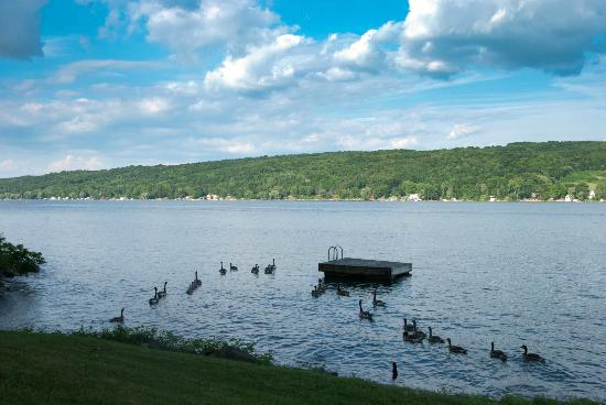 Tudor Hall B&B on Keuka Lake: babyark and Keuka Lake
