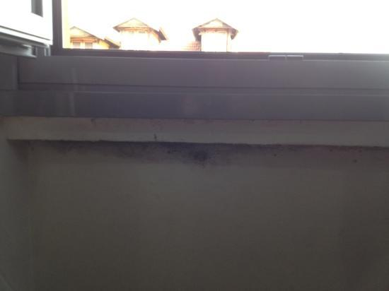 Hotel Arno: yet more mould