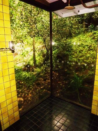 Amazing Wollumbin Palms Retreat at Mt Warning: The shower with views of the waterfall