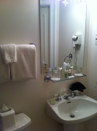 The Priory Hotel: bathroom in room #101