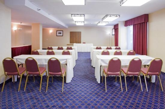 Holiday Inn Express Hotel & Suites Aurora: Meeting room at the Holiday Inn Express & Suites-D