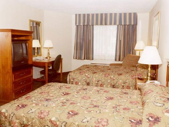 BEST WESTERN PLUS The Inn at Sharon/Foxboro: Guest Room
