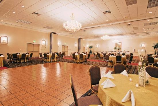 Holiday Inn - Mobile Downtown/Historic District: Ballroom