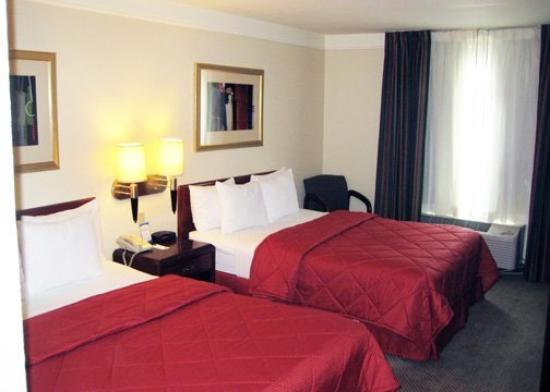 Comfort Inn &amp; Suites Houston: Guest Room