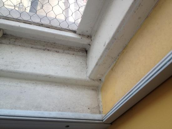 how to clean mold indow sill