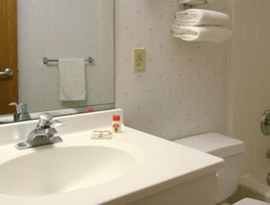 Super 8 Webster/Rochester: Bathroom